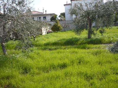 Terreno Edificabile Residenziale in vendita a Alba Adriatica, 9999 locali, zona Località: residenziale, Trattative riservate | Cambio Casa.it