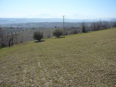 Terreno Edificabile Residenziale in vendita a Colonnella, 9999 locali, zona Località: ContradaGiardino, Trattative riservate | Cambio Casa.it