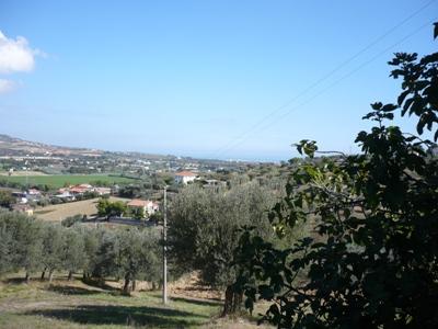 Terreno Edificabile Residenziale in vendita a Tortoreto, 9999 locali, prezzo € 130.000 | Cambio Casa.it