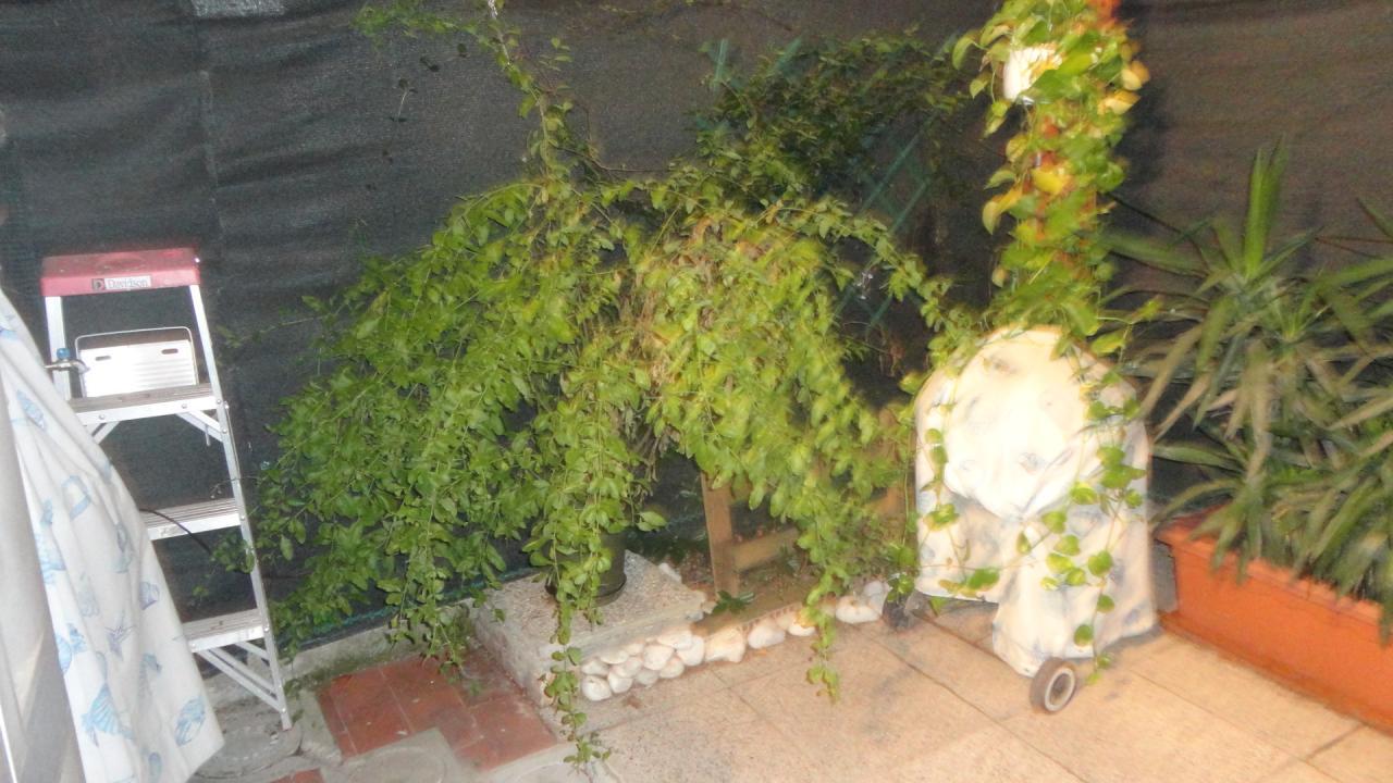 Bilocale Pisa Via Leopoldo Pilla 8