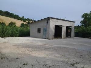 Vai alla scheda: Locale Commerciale Vendita Ancona