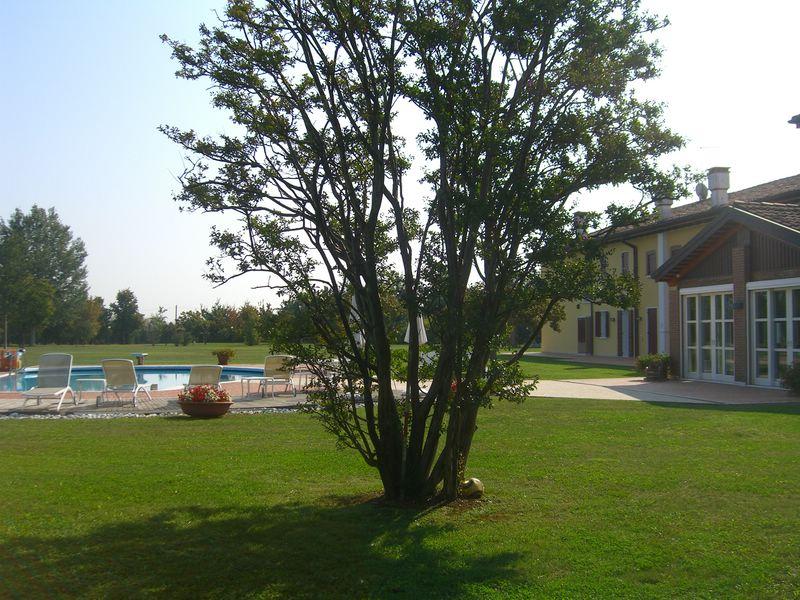 Rustico / Casale in vendita a San Biagio di Callalta, 20 locali, zona Località: Olmi, prezzo € 1.150.000 | CambioCasa.it
