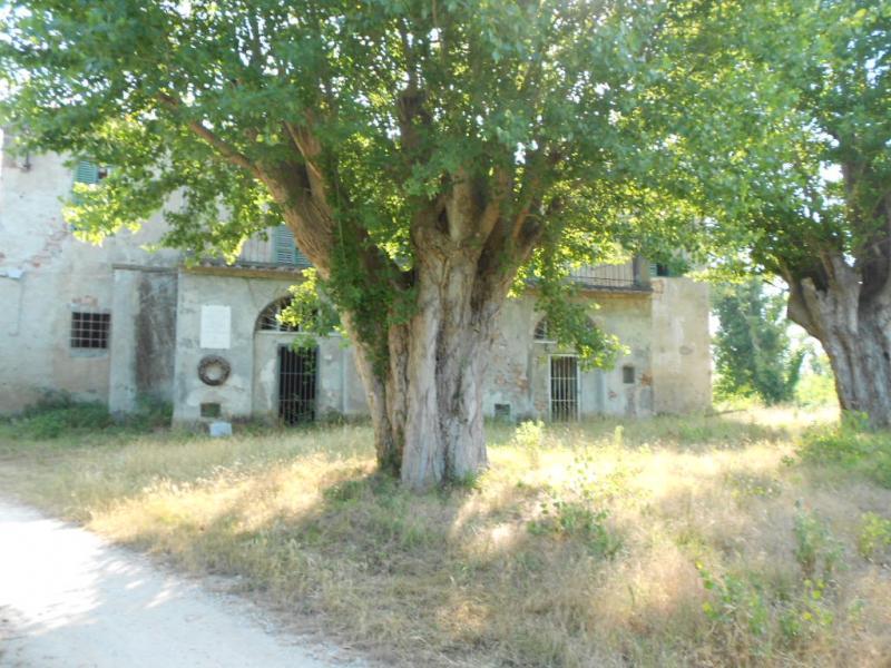 Rustico / Casale in vendita a Vecchiano, 14 locali, zona Zona: Migliarino, Trattative riservate | Cambio Casa.it