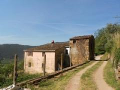Rustico / Casale in vendita a Buti, 6 locali, zona Località: PanicalesopraButi, prezzo € 530.000 | Cambio Casa.it