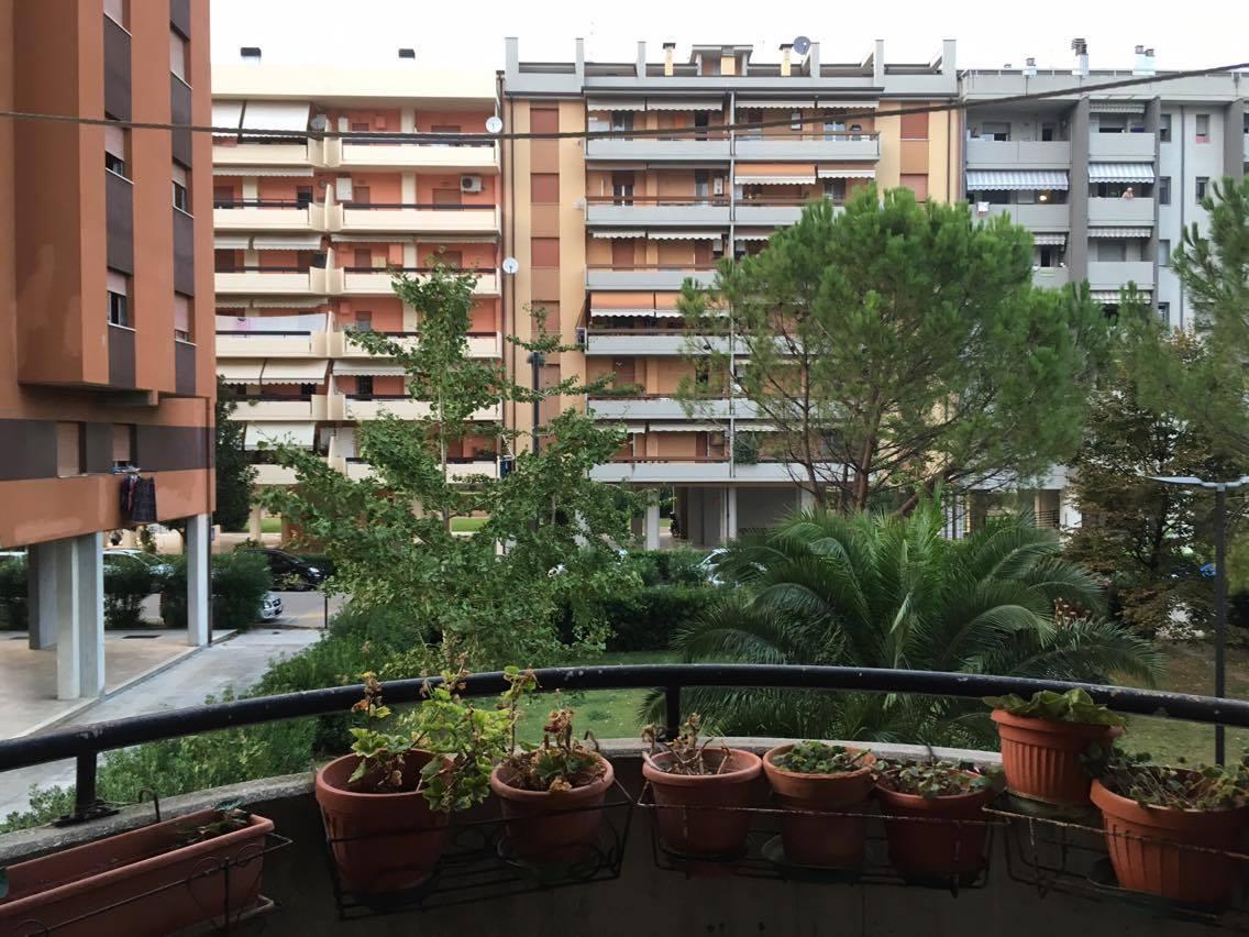 Appartamento in affitto a Ascoli Piceno, 2 locali, zona Zona: Monticelli, prezzo € 350 | Cambio Casa.it