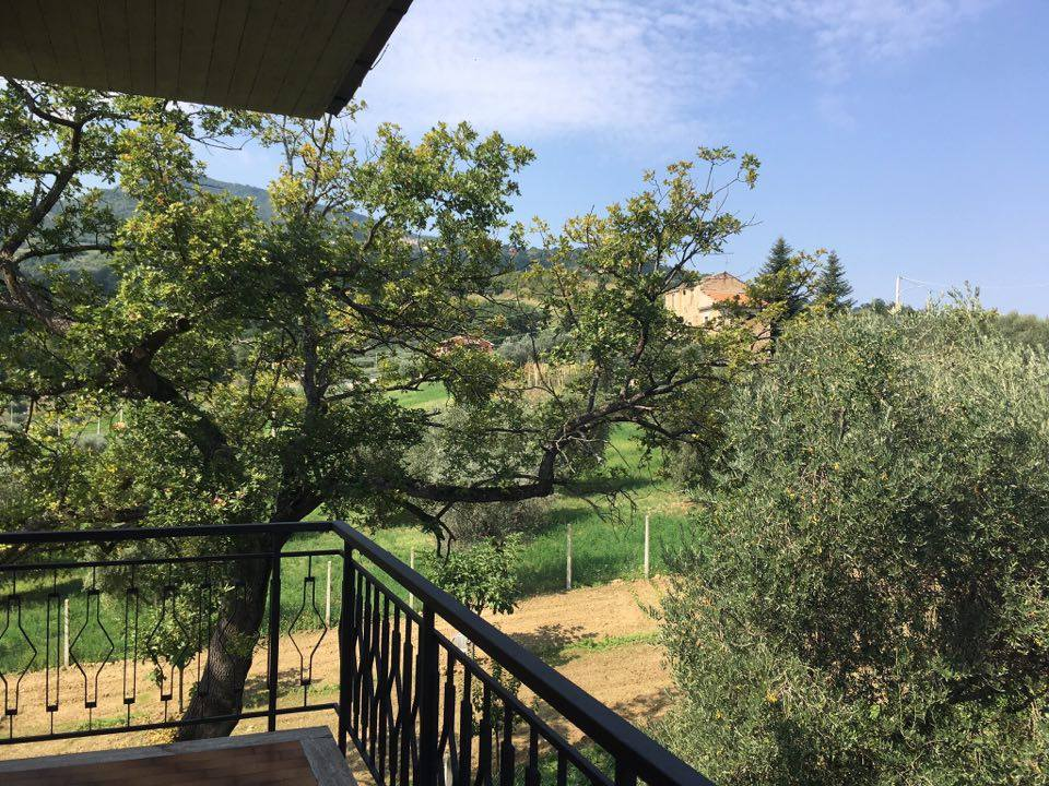 Appartamento in affitto a Folignano, 7 locali, zona Località: CastelFolignano, prezzo € 400 | Cambio Casa.it