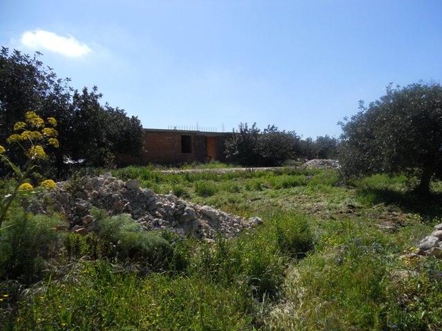 Terreno vendita SCICLI (RG) - 7 LOCALI - 7000 MQ