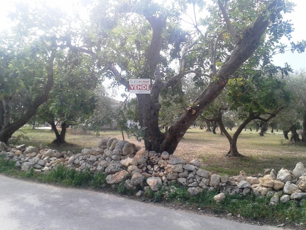 Terreno Agricolo in vendita a Scicli, 9999 locali, zona Zona: Scicli, prezzo € 5.000 | Cambio Casa.it