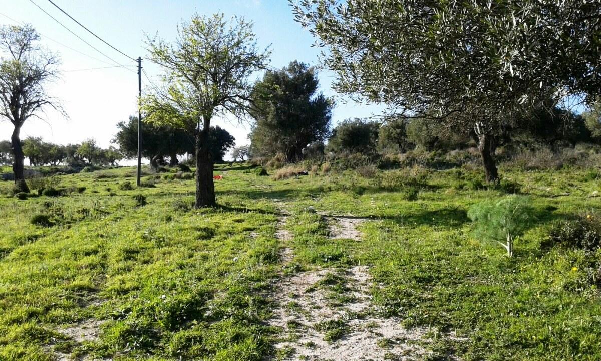 Terreno Edificabile Residenziale in vendita a Scicli, 9999 locali, zona Zona: Scicli, Trattative riservate | CambioCasa.it