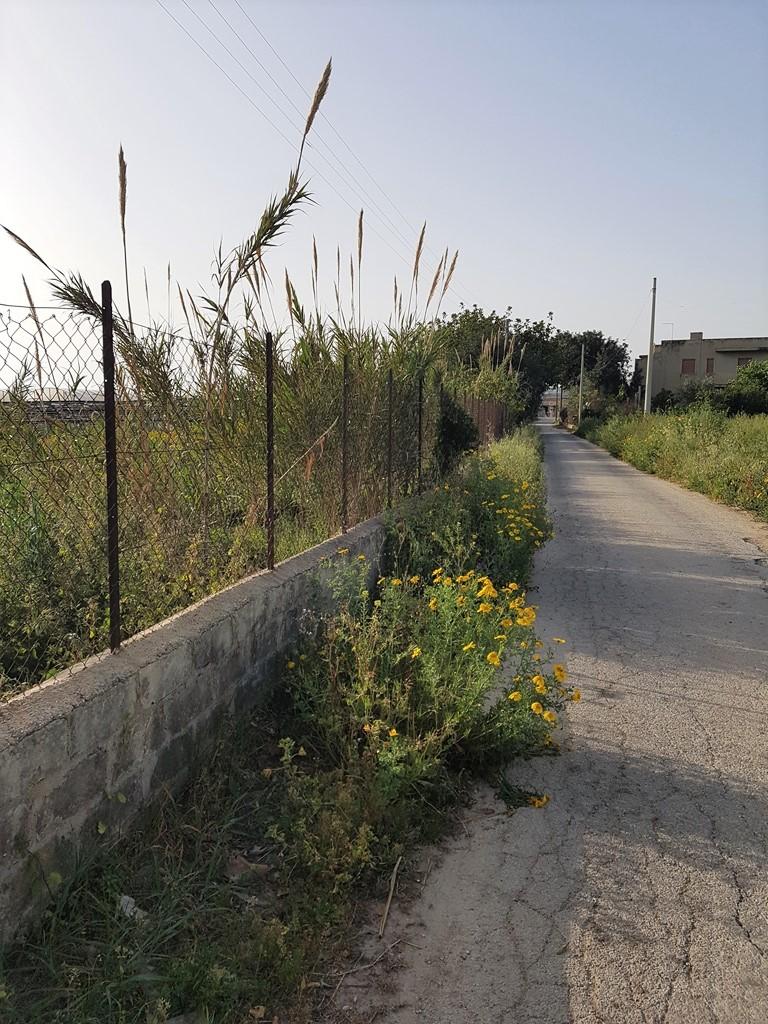 Terreno Agricolo in vendita a Scicli, 9999 locali, zona Località: CavadAliga, Trattative riservate | CambioCasa.it