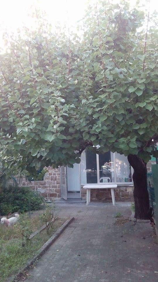 Soluzione Indipendente in affitto a Empoli, 6 locali, zona Zona: Marcignana, prezzo € 650 | Cambio Casa.it