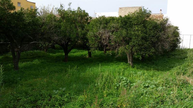 Terreno vendita BARCELLONA POZZO DI GOTTO (ME) - 7 LOCALI - 600 MQ