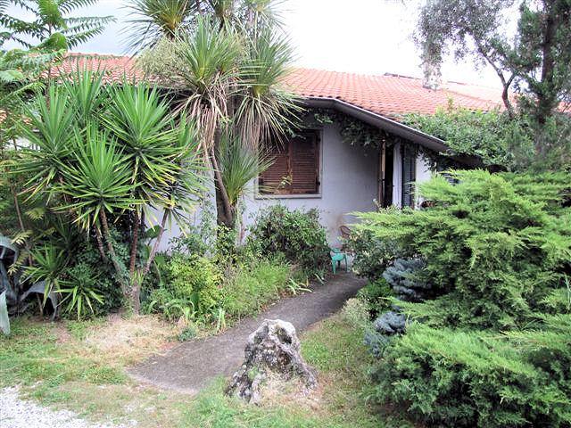 Soluzione Semindipendente in vendita a Massa, 4 locali, prezzo € 350.000 | Cambio Casa.it