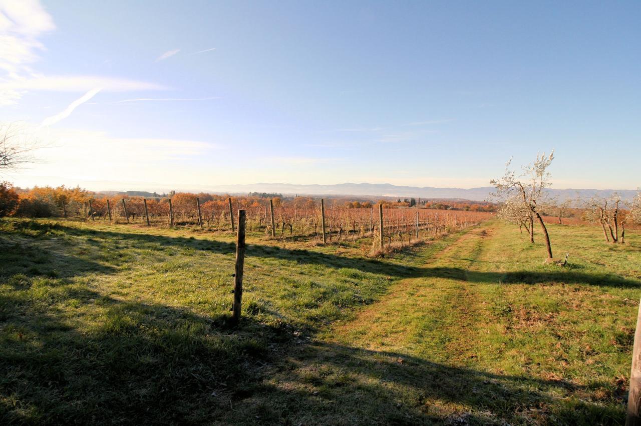 Azienda Agricola in Vendita a Loro Ciuffenna