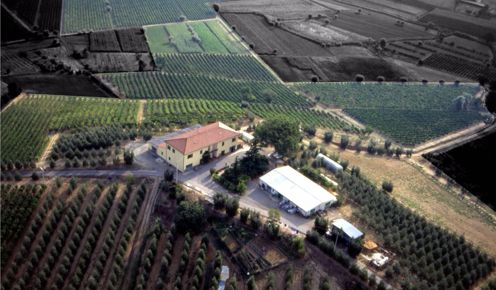 Azienda Agricola in vendita a Cerreto Guidi, 22 locali, prezzo € 1.350.000 | Cambio Casa.it