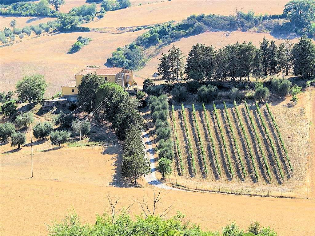 Azienda Agricola in vendita a Magliano in Toscana, 7 locali, zona Zona: Pereta, Trattative riservate | CambioCasa.it