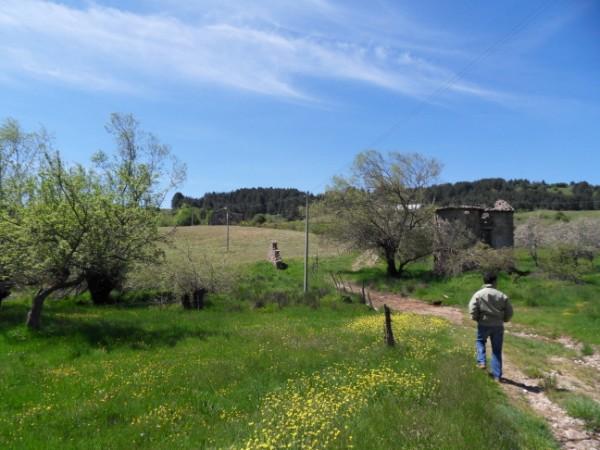 Terreno Agricolo in vendita a Celico, 9999 locali, prezzo € 1.000.000 | Cambio Casa.it
