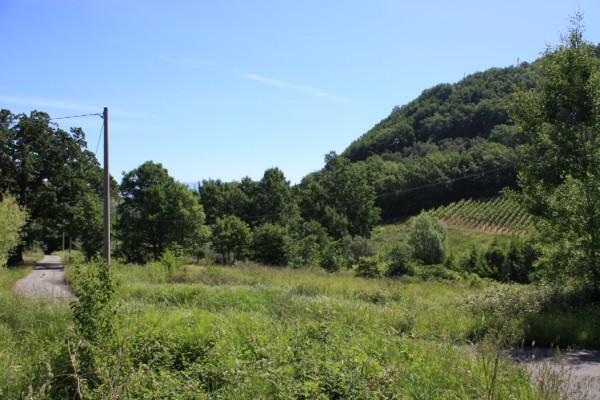 Terreno Agricolo in vendita a Rende, 9999 locali, prezzo € 150.000 | Cambio Casa.it