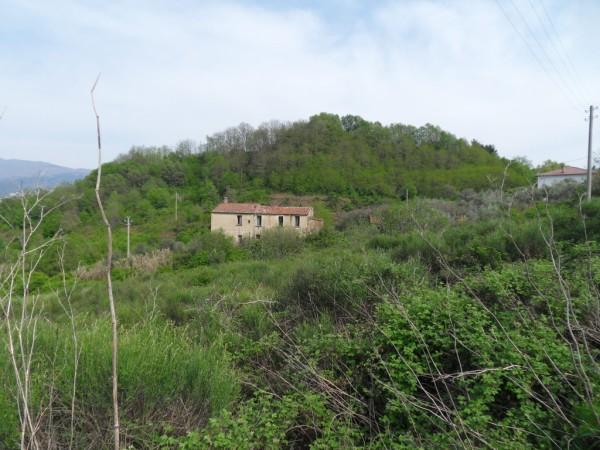 Terreno Agricolo in Vendita a Cosenza
