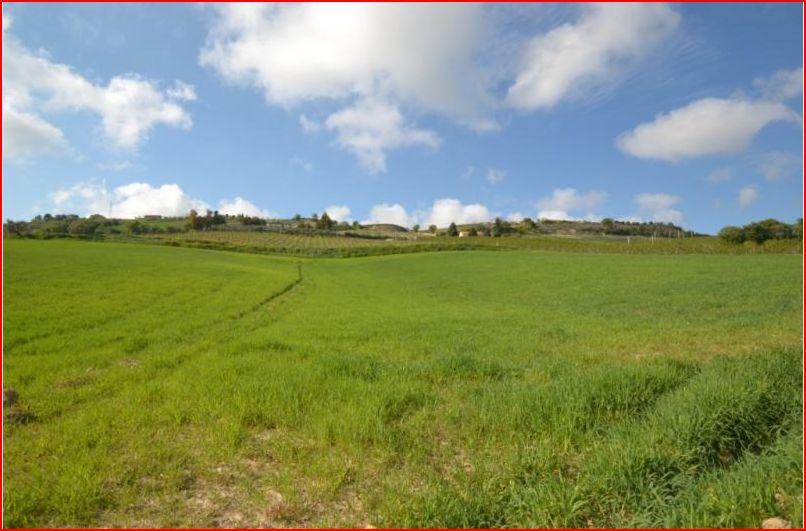 Terreno Agricolo in vendita a Altidona, 9999 locali, prezzo € 90.000 | Cambio Casa.it