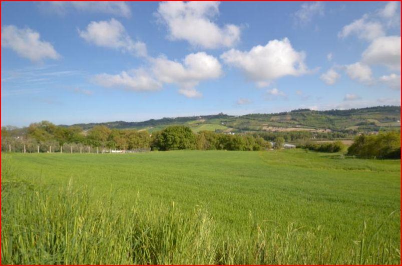 Terreno Agricolo in vendita a Altidona, 9999 locali, prezzo € 200.000 | Cambio Casa.it