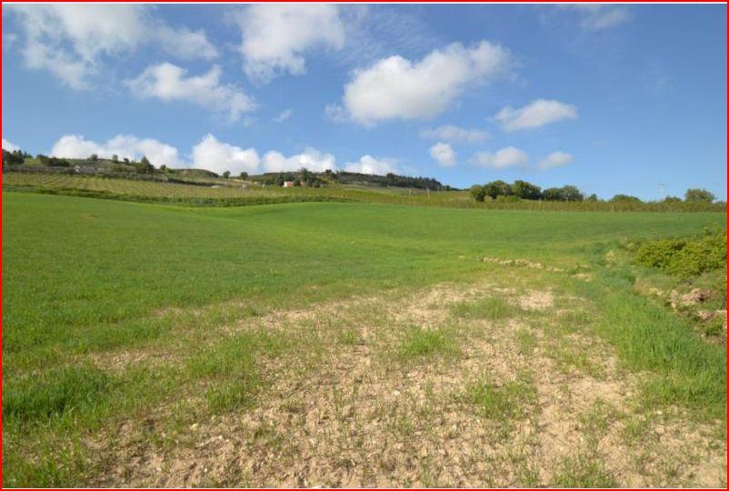 Terreno Agricolo in vendita a Altidona, 9999 locali, prezzo € 320.000 | Cambio Casa.it