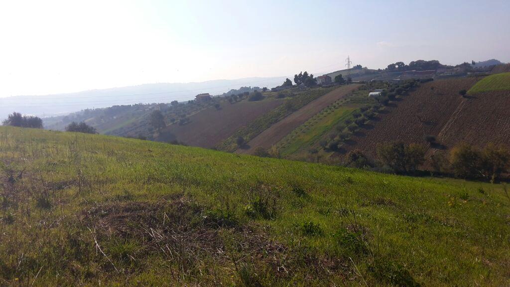 Terreno Agricolo in vendita a Monteprandone, 9999 locali, zona Località: Collinare, prezzo € 60.000 | Cambio Casa.it
