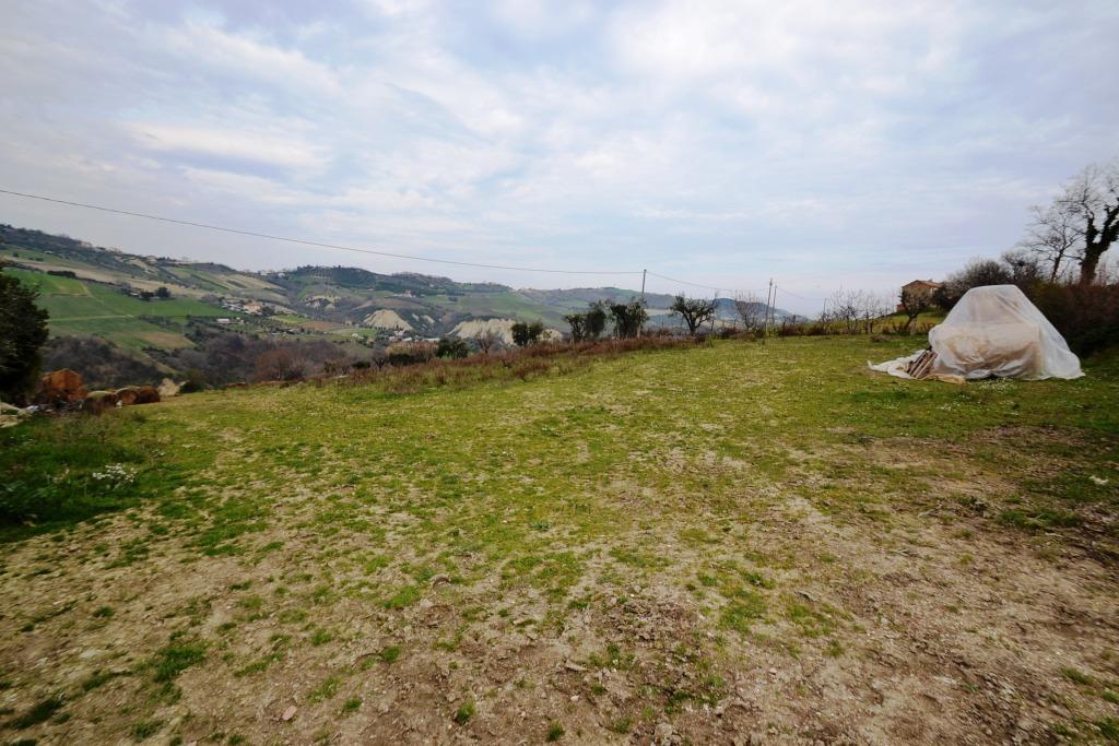Terreno Agricolo in Vendita a Monteprandone