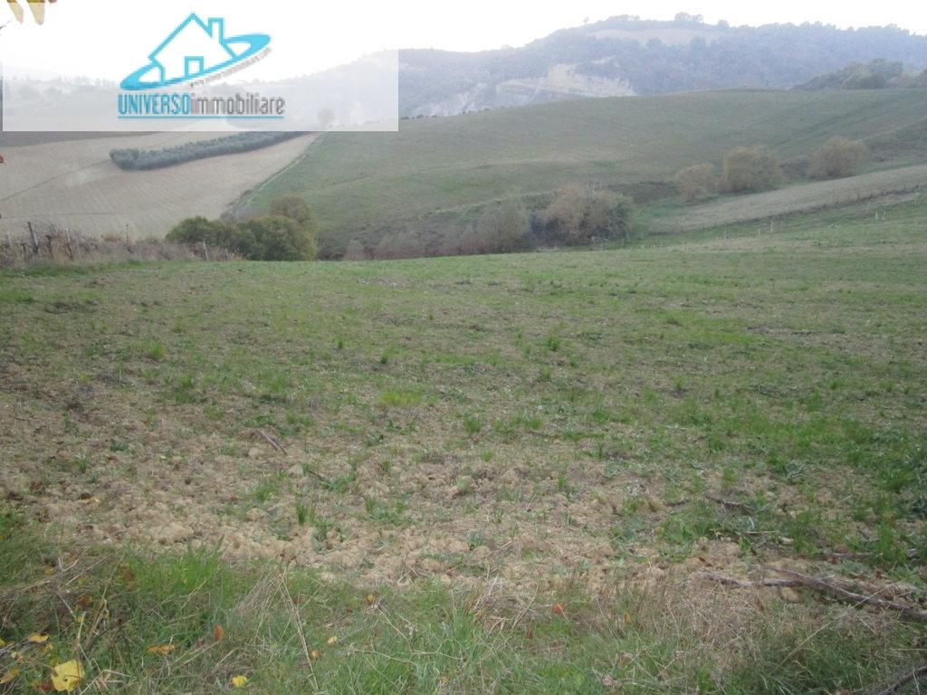 Terreno Agricolo in vendita a Castignano, 9999 locali, prezzo € 150.000 | Cambio Casa.it