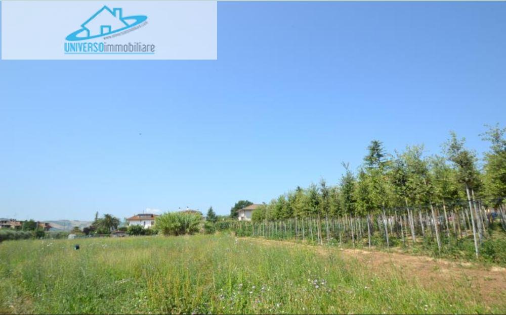 Terreno Edificabile Residenziale in vendita a Spinetoli, 9999 locali, zona Località: SanPioX, prezzo € 50.000 | Cambio Casa.it
