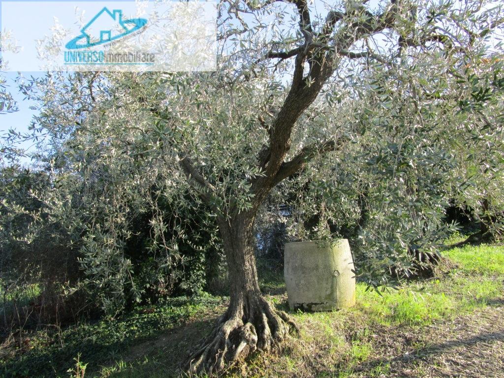 Bilocale Monteprandone Via Borgo Da Mare 6
