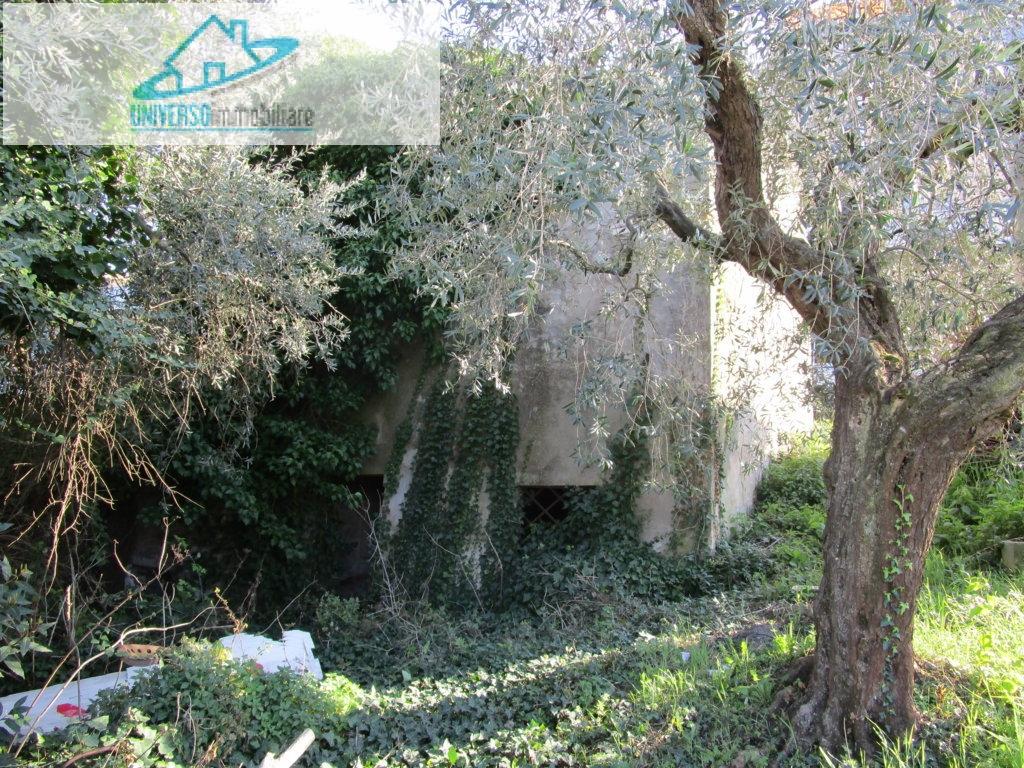 Terreno Agricolo in vendita a Monteprandone, 9999 locali, zona Località: Collinare, prezzo € 35.000 | CambioCasa.it