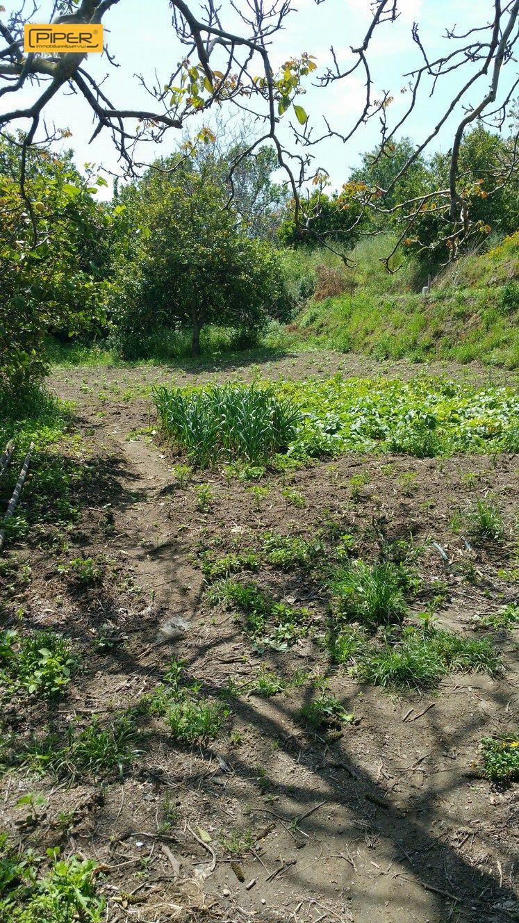 Terreno Agricolo in Vendita a Napoli