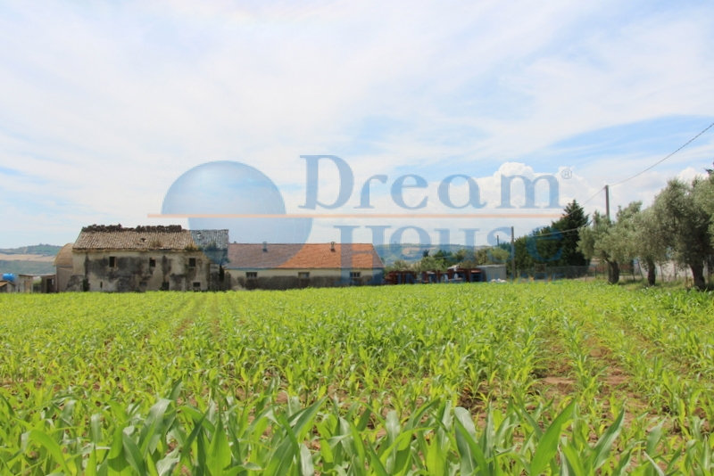 Terreno Agricolo in vendita a Mosciano Sant'Angelo, 9999 locali, prezzo € 220.000 | CambioCasa.it