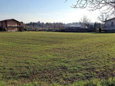 Terreno Edificabile Residenziale in Vendita a Albavilla
