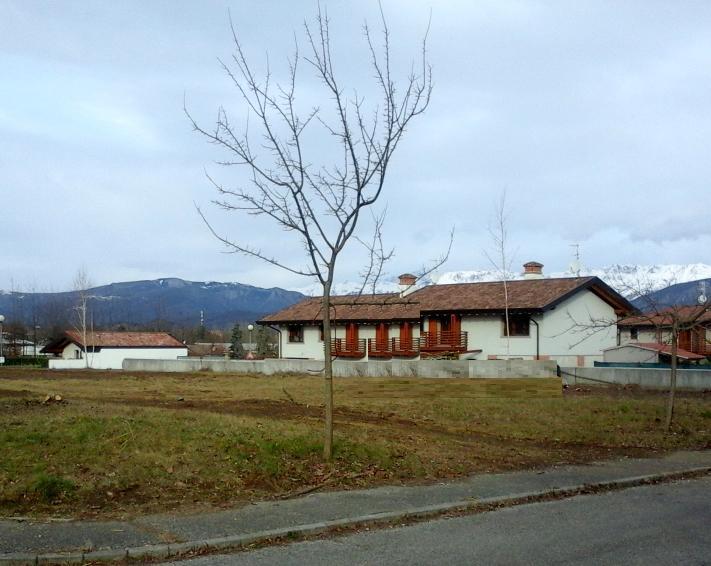 Terreno Edificabile Residenziale in Vendita a Tricesimo