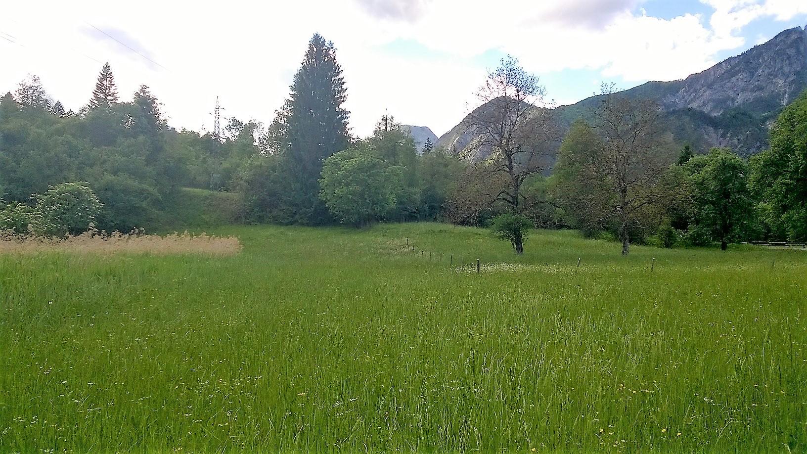Terreno Edificabile Residenziale in Vendita a Malborghetto Valbruna
