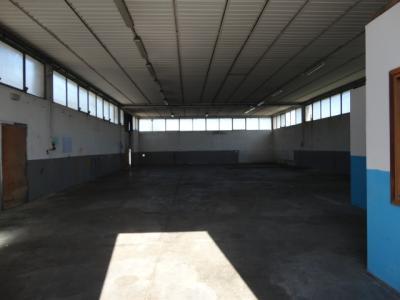 Attività commerciale in Affitto a Udine