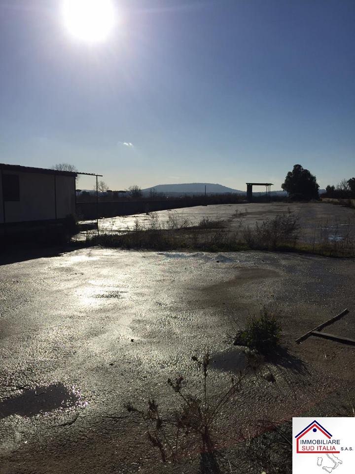 Terreno Agricolo in affitto a Giugliano in Campania, 9999 locali, zona Zona: Varcaturo, prezzo € 1.000 | CambioCasa.it