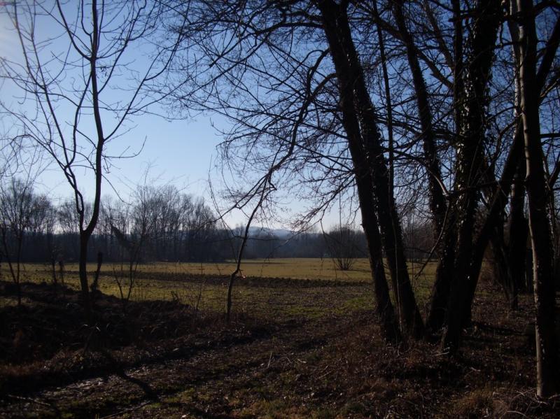 Terreno Agricolo in Vendita a Varese