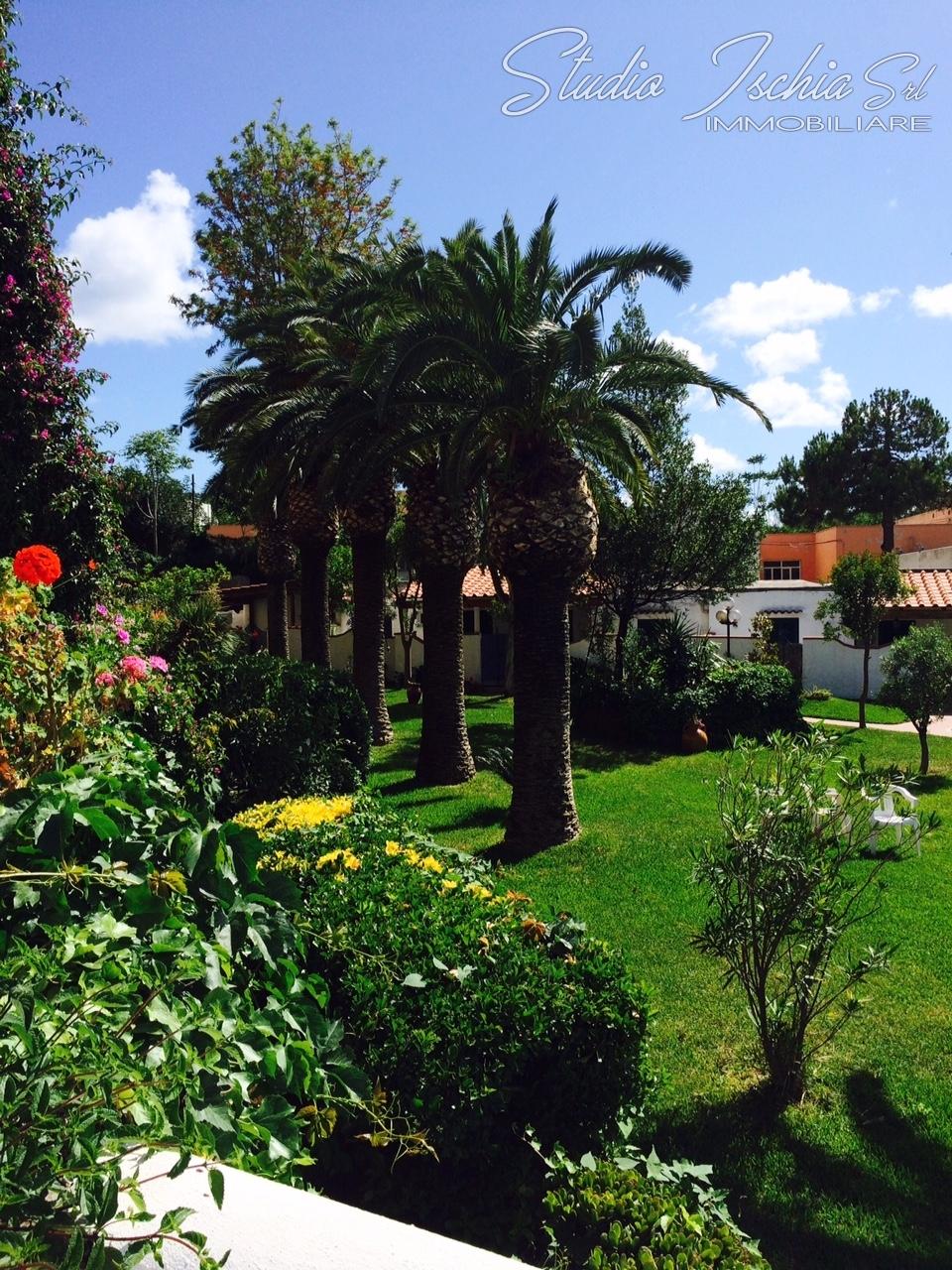 Appartamento in vendita a Forio, 1 locali, zona Località: Chiaia, Trattative riservate | CambioCasa.it