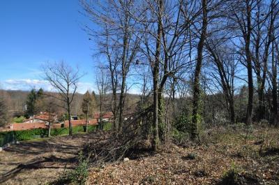 Terreno edificabile residenziale in Vendita a Guanzate