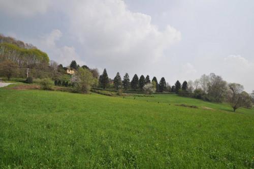 Terreno agricolo in Vendita a Capiago Intimiano