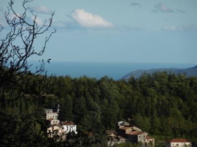 Casa singola in Vendita a Vessalico