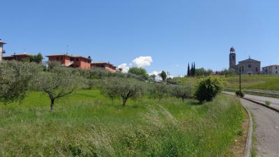 Building Land in Buy to San Felice del Benaco