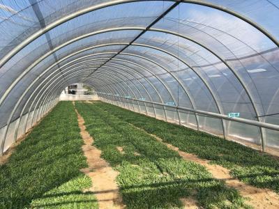 Agricultural Land in Buy to Puegnago sul Garda