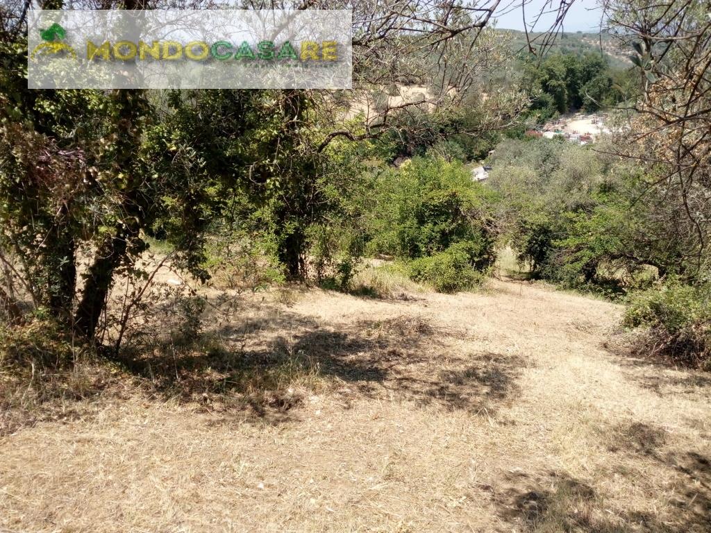 Terreno Edificabile Residenziale in Vendita a Montelibretti