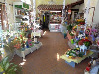 Attività commerciale in Vendita a Malnate