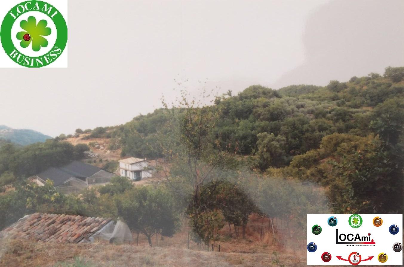 Azienda Agricola in vendita a Montalbano Elicona, 9999 locali, Trattative riservate | Cambio Casa.it