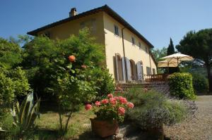 Villa in Vendita a Montopoli in Val d'Arno